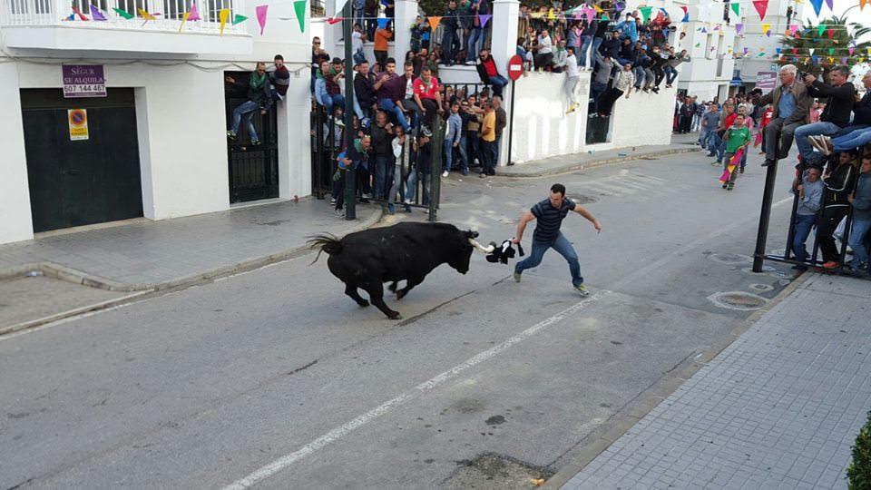 2° Toro Avda San Miguel